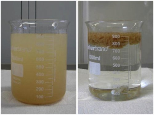 Chemical treatment of wastewater containing chocolate, oil and grease.